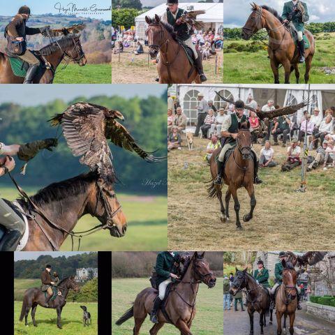 Falconry & Horses, Horseback Falconry