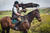 Falconry from horses, 2 people